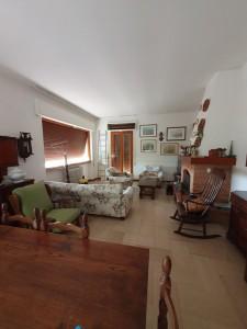 Appartamento - Seravezza - Pozzi